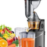 Mueller Austria Ultra Juicer Machine Extractor vs Omega NC800